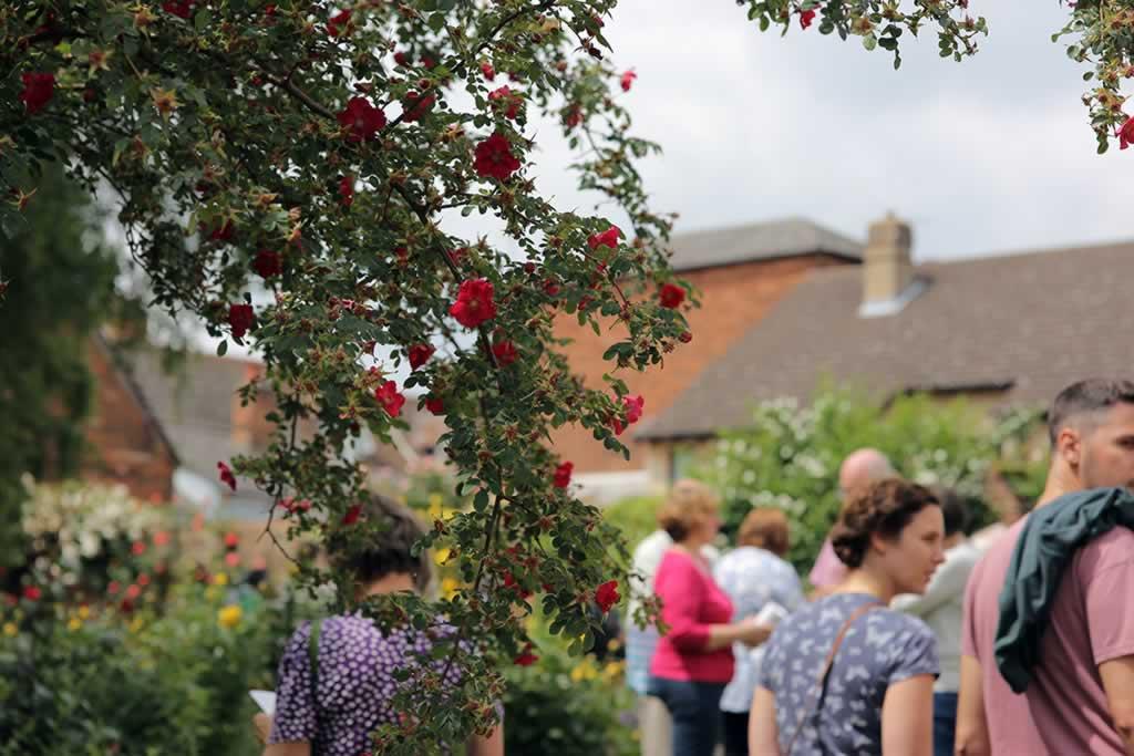 Hidden Gardens of Bury St Edmunds